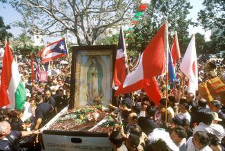 <!--:es-->DEMOS A CONOCER A JESÚS, Y LAS ROSAS FLORECERÁN EN INVIERNO<!--:-->