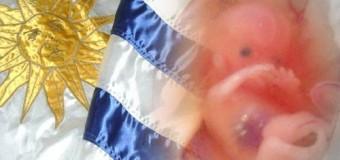 <!--:es-->URUGUAY: 56 POR CIENTO ES PRO-VIDA Y SE OPONE AL ABORTO<!--:-->