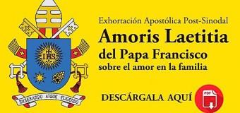 DESCARGA AQUÍ EN PDF LA EXHORTACIÓN POST-SINODAL AMORIS LAETITIA DEL PAPA FRANCISCO