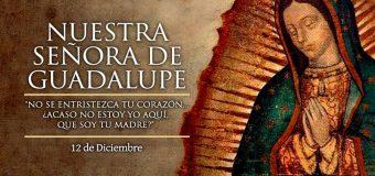 12 DE DICIEMBRE: ¡FELIZ FIESTA DE LA VIRGEN DE GUADALUPE!