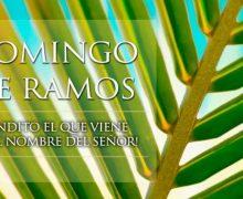 HOY SE CELEBRA EL DOMINGO DE RAMOS: ¡BENDITO EL QUE VIENE EN EL NOMBRE DEL SEÑOR!