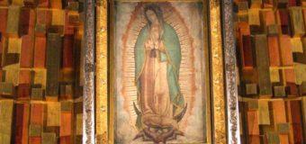 ARZOBISPO DE LOS ÁNGELES LIDERARÁ PEREGRINACIÓN A LA VIRGEN DE GUADALUPE EN MÉXICO
