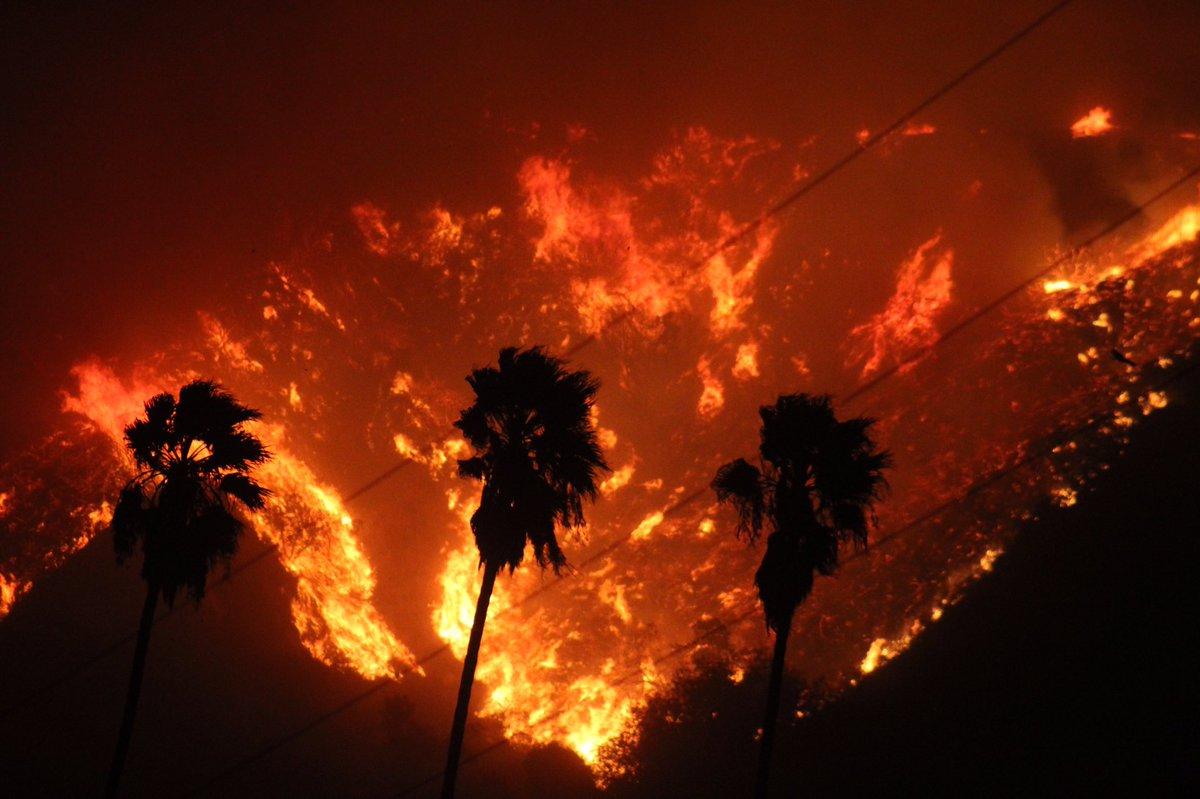 ARZOBISPO PIDE ORACIONES POR MILES DE AFECTADOS POR INCENDIOS EN CALIFORNIA