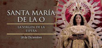 """18 DE DICIEMBRE: SE CELEBRA TRADICIONALMENTE A SANTA MARÍA DE LA """"O"""", LA VIRGEN DE LA ESPERA"""