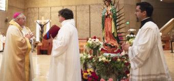 VAYAN A JESÚS A TRAVÉS DE MARÍA