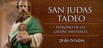 CELEBRAMOS A SAN JUDAS TADEO, PATRONO DE LAS CAUSAS IMPOSIBLES