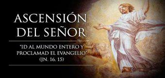 HOY CELEBRAMOS LA SOLEMNIDAD DE LA ASCENSIÓN DEL SEÑOR