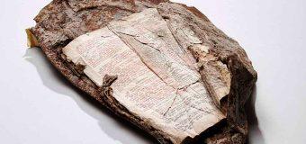 ESTE FRAGMENTO DE LA BIBLIA QUEDÓ INCRUSTADO EN LOS ESCOMBROS DE LAS TORRES GEMELAS